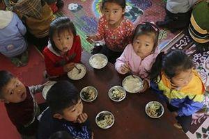 Báo động thực trạng thiếu lương thực và chăm sóc y tế ở Triều Tiên