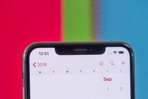 Apple sẽ không từ bỏ 'tai thỏ' ít nhất cho đến năm 2020?
