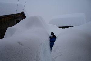 Dãy Alps tuyết lở - Ít nhất 12 người thiệt mạng vì tuyết lớn và gió mạnh ở Châu Âu