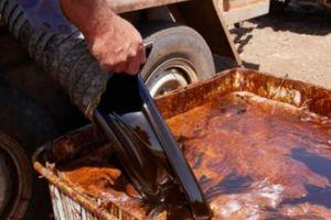 Tin vui: Lô mật rỉ 'khủng' đầu tiên của Việt Nam xuất khẩu sang Úc