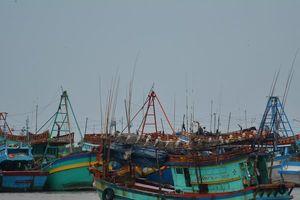 3 tàu cá, 21 ngư dân bị Thái Lan bắt giờ ra sao?