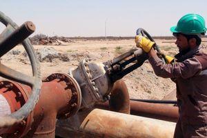 Giá dầu tăng liên tục nhờ tin Mỹ-Trung, OPEC