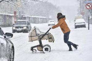 Hình ảnh châu Âu tê liệt vì tuyết rơi dày
