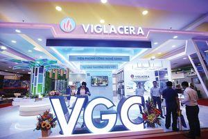 Viglacera (VGC) giao dịch trên HOSE đầu xuân Kỷ Hợi