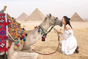 Nhiều công ty lữ hành tạm dừng khai thác tour Ai Cập sau vụ đánh bom