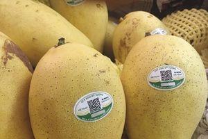 'Bệ phóng' cho trái cây Việt xuất khẩu vào thị trường Mỹ