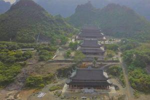 Cây thiêng bí ẩn trong ngôi chùa lớn nhất thế giới ở Hà Nam