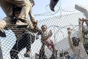Những bức ảnh giàu sức lan tỏa về cuộc nội chiến ở Syria