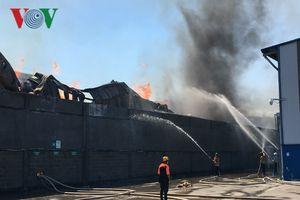 Bình Dương: Cháy lớn thiêu rụi 2000 m2 nhà xưởng chứa mút xốp