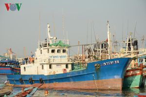 Bà Rịa – Vũng Tàu: Tàu 67 nằm bờ vì 'vướng' bảo hiểm
