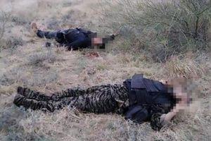 Băng đảng Mexico hỗn chiến đẫm máu, 20 thi thể nằm gần biên giới Mỹ