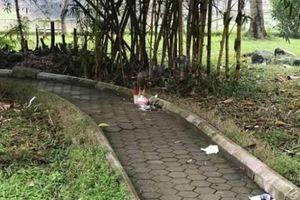 Cô gái chết bí ẩn ở vườn hoa Hà Đông làm gì trước buổi tối định mệnh?