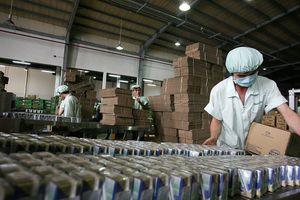Hành trình ra thế giới của sữa Việt