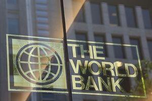 Ngân hàng Thế giới hạ dự báo tăng trưởng kinh tế thế giới năm 2019