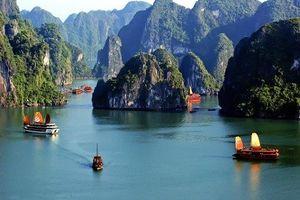 Hải Phòng tăng phí thăm quan vịnh Cát Bà 750%, doanh nghiệp kêu cứu