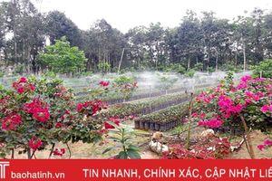 Hương Khê xây dựng thành công 217 mô hình vườn mẫu cấp tỉnh