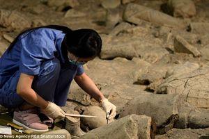 Trung Quốc khai quật khu lăng mộ có niên đại hơn 1.500 năm