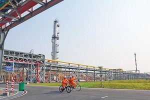 PVN tiếp tục khẳng định vị thế số 1 của nền kinh tế