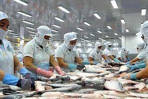 Thủy sản An Giang (AGF): 'Mắc cạn' với khoản lỗ lớn