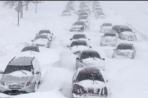 Bão tuyết bao phủ một nửa Mỹ, giao thông gián đoạn