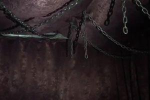 Spa đồng tính trang bị lồng sắt, dây xích, phim khiêu dâm