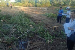 Ngang nhiên san ủi hơn 1.000 m2 đất của nhà nước