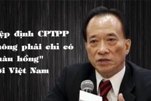 Hiệp định CPTPP không phải chỉ có 'màu hồng' với Việt Nam?