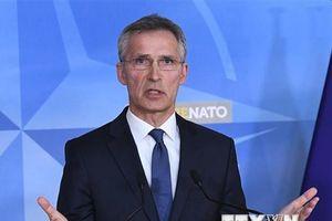 Nga cáo buộc NATO lợi dụng vấn đề INF để đánh lạc hướng dư luận
