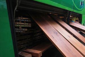 Quảng Nam: Phát hiện nhiều gỗ lậu được vận chuyển trên xe khách giường nằm