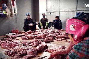 Vĩnh Phúc: Phát lộ cơ sở kinh doanh 'phù phép' hàng loạt con lợn lở mồm long móng thành trâu gác bếp trong sự kinh hãi của nhiều người