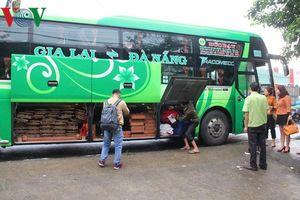 Quảng Nam: Bắt hai xe khách giường nằm chở gỗ lậu