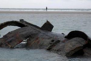 Tàu ngầm từ thời Thế chiến 1 của Đức bỗng 'trồi lên' ở bãi biển Pháp