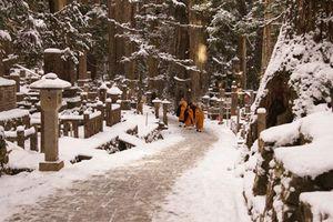 Nhờ những thứ có 1-0-2 này mà ai cũng muốn du lịch Nhật Bản vào mùa đông