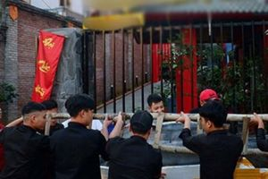 Cả chục thanh niên dùng thang khênh con cá tra khổng lồ ở Lào Cai