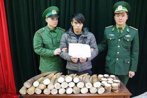 Bắt đối tượng vận chuyển ngà voi sang Trung Quốc