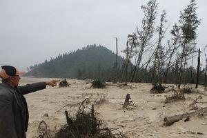 Dân lo vì biển 'nuốt' mất rừng phòng hộ