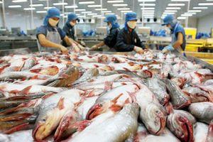91% cá tra Việt Nam xuất khẩu là sang Mỹ