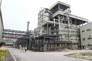 Pvtex nâng công suất nhà máy sản xuất xơ sợi lên dây chuyền thứ 10