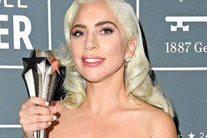 Critics' Choice Awards 2019: Lady Gaga ẵm cúp Nữ chính xuất sắc nhất, 'Roma' thắng hết giải lớn, Black Panther ôm loạt giải phụ