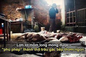 Hãi hùng lợn lở mồm long móng được 'phù phép' thành thịt trâu gác bếp bán ngày Tết