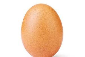 Hơn 20 triệu like trên Instagram dành cho... 1 quả trứng