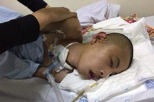 Hà Nam: Xót xa hoàn cảnh của hai cháu trai sinh đôi phải phẫu thuật não sau tai nạn giao thông