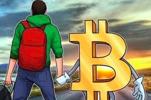 Giá tiền ảo hôm nay (14/1): Vì sao trong lúc thị trường tiền điện tử suy thoái, Bitcoin luôn giảm ít nhất?