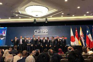Hiệp định CPTPP chính thức có hiệu lực với Việt Nam