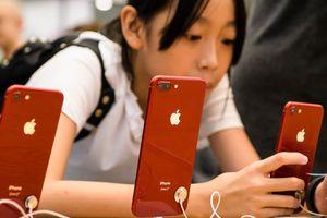 Người dùng 'quay lưng', giá iPhone đồng loạt giảm mạnh tại Trung Quốc