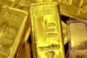 Vàng miếng tăng giá nhẹ, USD tự do giảm mạnh