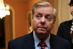 Thượng nghị sĩ thân cận đề nghị Trump tạm mở cửa chính phủ