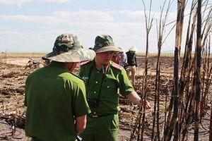 Đắk Lắk: Dân khổ vì cháy hơn 100ha mía đang cho thu hoạch