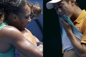 Australian Open 2019: Nishikori 'chết hụt', Serena khởi đầu như mơ