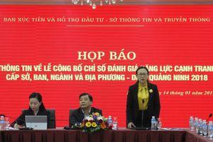 DDCI Quảng Ninh 2018: Hướng tới sự phát triển bền vững của doanh nghiệp